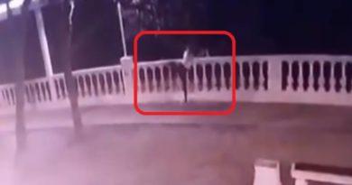 В Геленджике разбилась 19-летняя девушка, сорвавшись с кручи