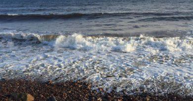 В Мурманской области затонуло судно из Геленджика: погибли двое человек